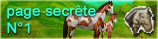 click pour la page secrète 1